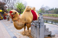 China Henan tourist attractions Kaifeng Qingming River park. Stock Photo