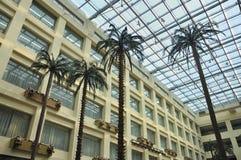 China Hotel lobby Coconut tree Stock Photography