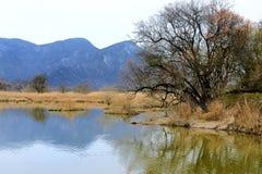 China Hubei Province, Shennongjia landscape Stock Image