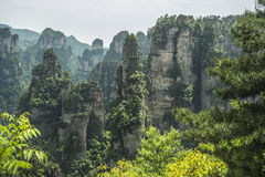 China hunan Western Famous mountains Zhangjiajie. China hunan Western Zhangjiajie Natural scenery Famous mountains Tourism Movie Avatar Shooting locations royalty free stock photography