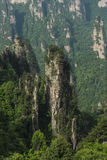 China  hunan Western  Famous mountains  Zhangjiajie. China  hunan Western  Zhangjiajie  Natural scenery  Famous mountains  Tourism  precipice Royalty Free Stock Image