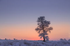 China Jilin Rime Island dawn. Eastphoto, tukuchina, China Jilin Rime Island dawn, Nature, Beauty Stock Image