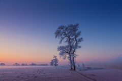 China Jilin Rime Island dawn Royalty Free Stock Photo