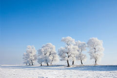 China Jilin Rime Island scenery Stock Images