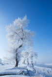 China Jilin Rime Island scenery Stock Photography