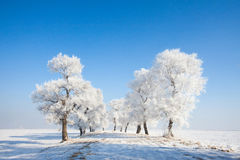 China Jilin Rime Island scenery Stock Photo