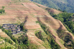 China landscape  - Dragon`s Backbone Rice Terraces Stock Photography