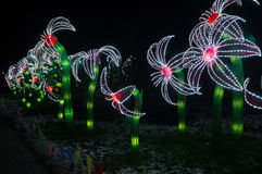 China lights Royalty Free Stock Images