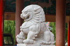 China lion sculpture at the shrine Royalty Free Stock Photos