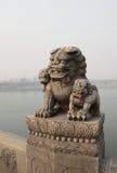 China Lugou Bridge Shishi Stock Images