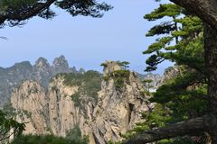 China Mount Huangshan with green trees and beautiful rocks Royalty Free Stock Photos