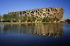 China National Stadium in Beijing Royalty Free Stock Image