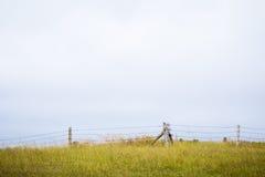 China-Nordwiesenlandschaft Lizenzfreie Stockfotografie