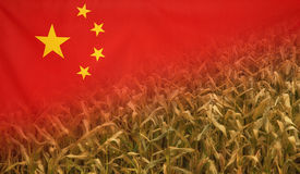 China Nutrition Concept Corn field with fabric Flag Stock Image