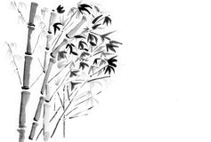 China painting bamboo. On paper Stock Photography