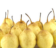 China pears isolated on white close up Stock Photography