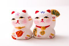 China-plutus Katze Lizenzfreies Stockbild