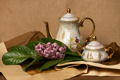 China porcelain tea set. Flower decoration Stock Photo
