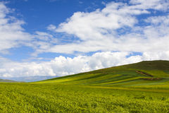 China Qinghai Tourism Stock Photo