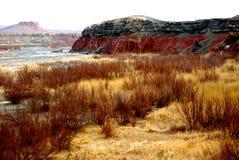 China Red River Valley. At XinJiang Royalty Free Stock Photos
