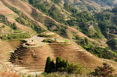 China - rice terraces Stock Image