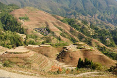 China - rice terraces Stock Images