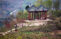 China-rote Pagode-Rosa-Pfirsich-Blüten Sichuan China Stockfotos