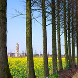 China's rural scenery of spring Royalty Free Stock Photos