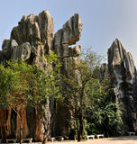 China's Stone Forest Stock Image