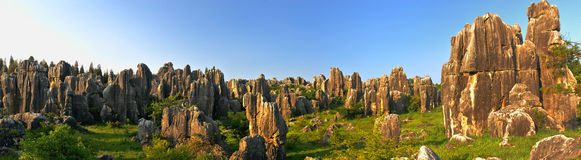 Free China S Stone Forest Stock Images - 9781444