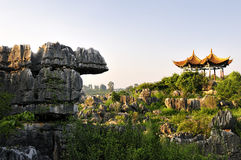 China's Stone Forest Royalty Free Stock Photos