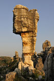 China's Stone Forest Royalty Free Stock Photography