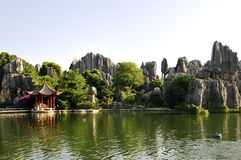 Free China S Stone Forest Royalty Free Stock Photography - 9806527