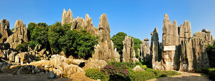 China's Stone Forest Royalty Free Stock Photo