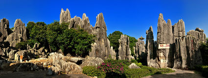 China's Stone Forest stock images