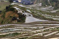 China's yunhe terraces Stock Photos