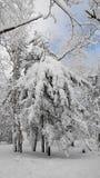 China-Schnee-Stadt stockbild