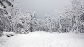 China-Schnee-Stadt Lizenzfreies Stockbild
