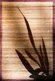 China shadow 1. Shadow of a plant on a wood-structure Royalty Free Stock Photos