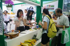 China (Shenzhen) International Modern Green Agricultural Expo Stock Photo