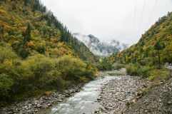 China Sichuan autumn scenery of Heishui Stock Photos
