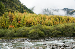 China Sichuan autumn scenery of Heishui Royalty Free Stock Photography