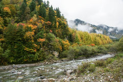 China Sichuan autumn scenery of Heishui Royalty Free Stock Photo