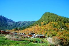 China Sichuan Jiuzhaigou scenery. Autumn, Jiuzhaigou mountain scenery Stock Photography