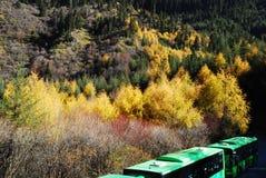 China Sichuan Jiuzhaigou scenery. China Sichuan Jiuzhaigou Scenic colored mountains and woods Royalty Free Stock Photo