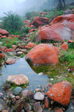 China sichuan kangding yajiageng red rock beach. Red rock beach is located in the west of china, near kangding county, the river rapids is all covered red Stock Photography
