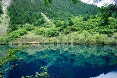 China sicuan del ¼ del ï del parque nacional de Jiuzhaigou Fotografía de archivo libre de regalías