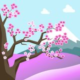 China spring landscape with sakura blossom on tree. Field covered with flowers, high mountain with snowy top and blue sky with white clouds vector illustration Royalty Free Stock Photo