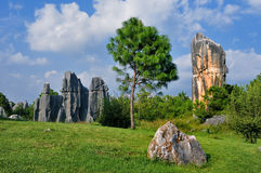 China Stone Forest stock images