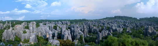 China Stone Forest Stock Photos